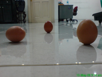 Telur Bisa Berdiri Kapan Aja..? Betul! dsc00007 2