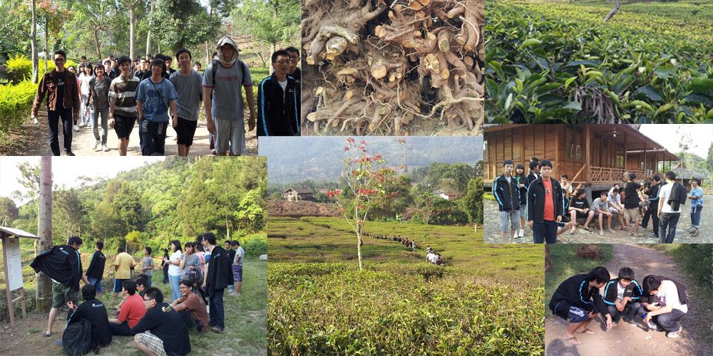 Kebersamaan AM 4-5 Oktober 2011 (Hari Pertama) tea 5