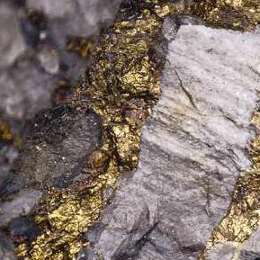 Analogi Wirausaha Teknologi (Technopreneur) gold mine 1